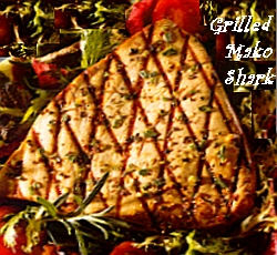 Grilled mako shark steak