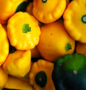 Patty pan squash